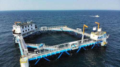 China promotes sustainable, ecological marine farming with technology